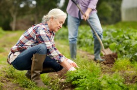 farming, gardening, agriculture and people concept - happy senio